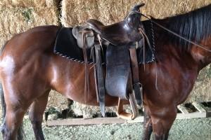 lazy-sp-props-western-saddle-01
