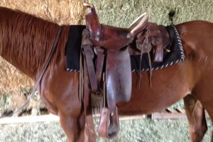 lazy-sp-props-western-saddle-02