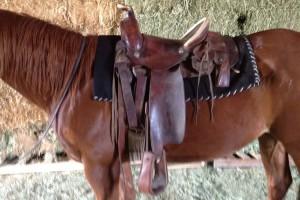 lazy-sp-props-western-saddle-02