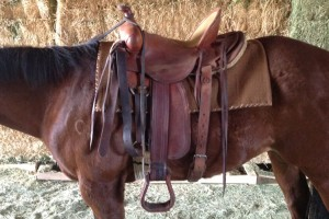 lazy-sp-prop-western-saddle-04