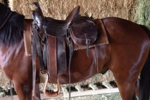 lazy-sp-props-western-saddle05